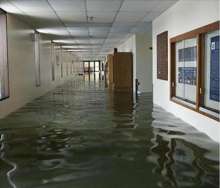 Commercial Keeping Your Business Above Water after Water Damage