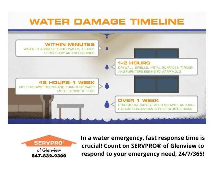 Description of the damage that occurs in the first hours and days following water damage