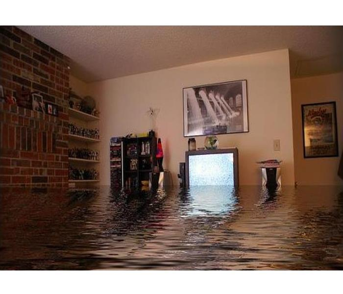My Basement Is Flooding What Can I Do: Water Damage! What Do I Do With My Soggy Stuff?