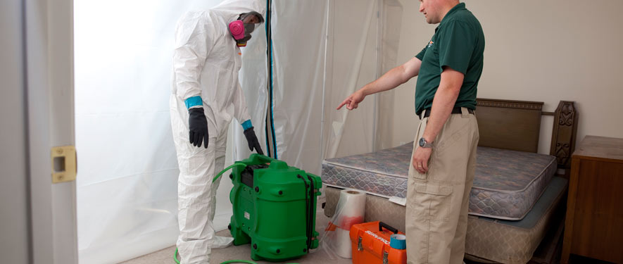 Glenview, IL mold removal process